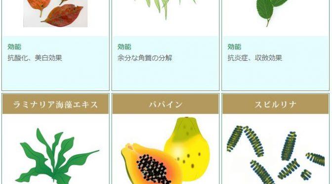 Rebelle名古屋店ハーブピーリング!10種類のハーブをご紹介!